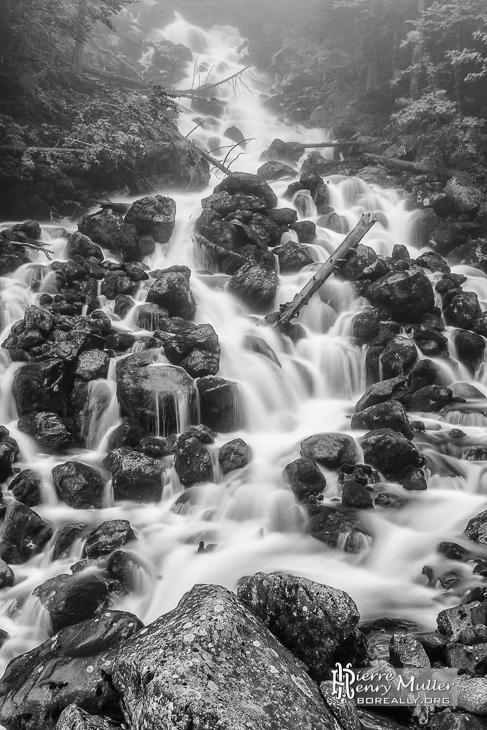 image noir et blanc